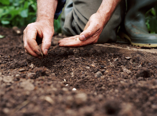 Decade in review: Trends in seed- and early-stage funding