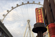 We interviewed cyber experts on a Vegas ferris wheel. Then ride security showed up…