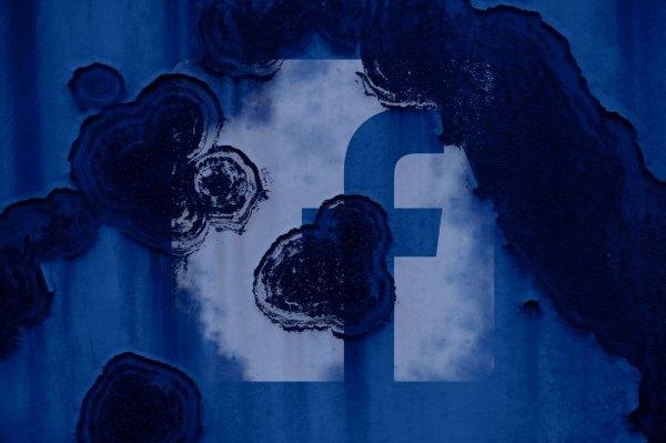 Legislators from ten parliaments put the squeeze on Facebook