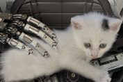 Review: The Talos Principle: Deluxe Edition - Still A Fine First-Person Puzzler Five Years On