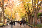 StuDocu raises $50M as its note-sharing network for college students passes 15M users
