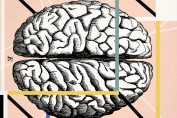 How big science failed to unlock the mysteries of the human brain