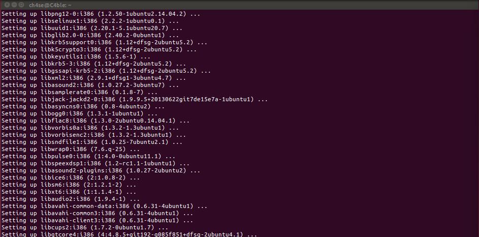 Installing Skype on Ubuntu