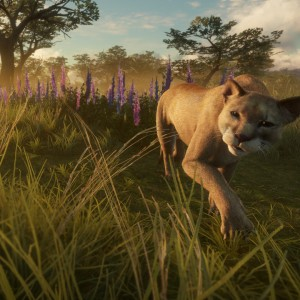 New Reserve Parque Fernando Available Now for theHunter: Call of the Wild on Xbox One