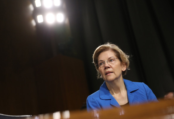 Venture investors and startup execs say they don't need Elizabeth Warren to defend them from big tech