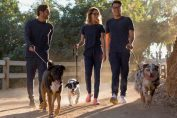 Former Casper execs are building a direct-to-consumer dog food startup called Jinx