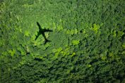 As concerns rise over forest carbon offsets, Pachama's verified offset marketplace gets $15 million