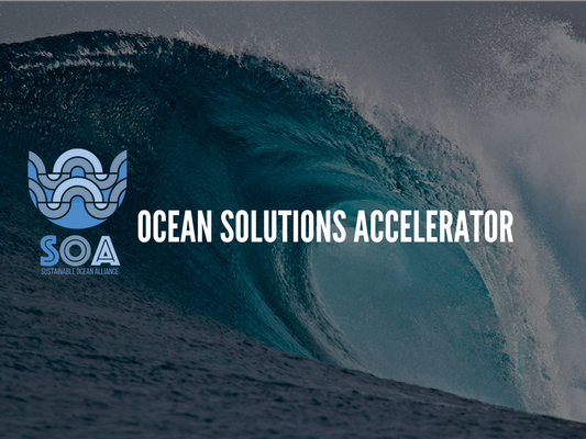 Ocean Solutions Accelerator doubles down on blue economy with new track for later-stage companies