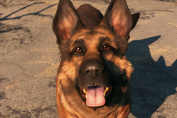 An Ode To Fallout 4's Dogmeat After Real Life Dog Inspiration Named River Passes Away
