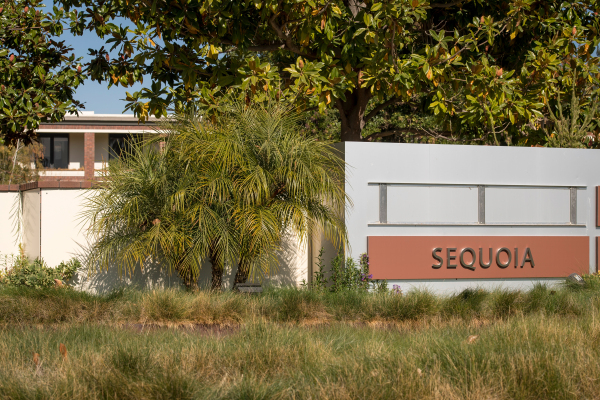 Sequoia unveils fifth group of startups for Surge